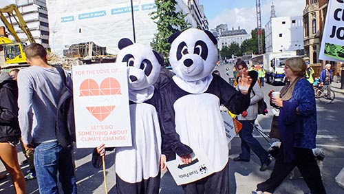 Panda costumes at demo for animals