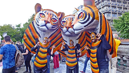 Tiger costumes at demo